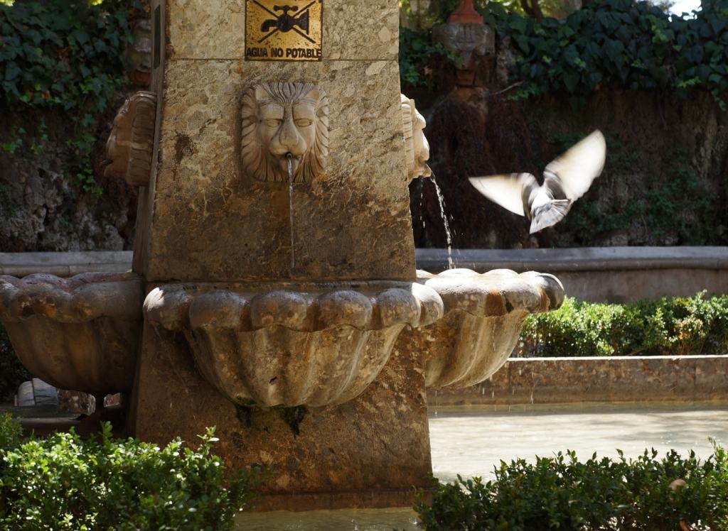 Fountain Palma de Majorca