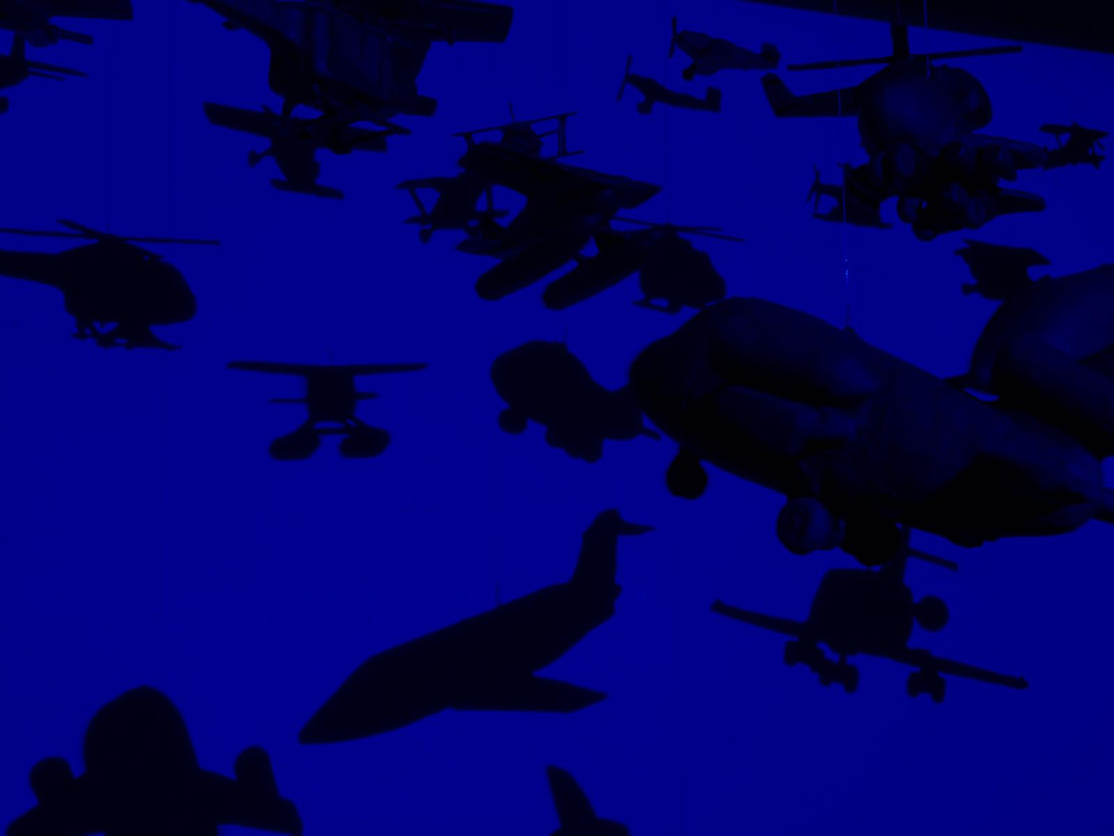Martina Büttner installation the birds 10