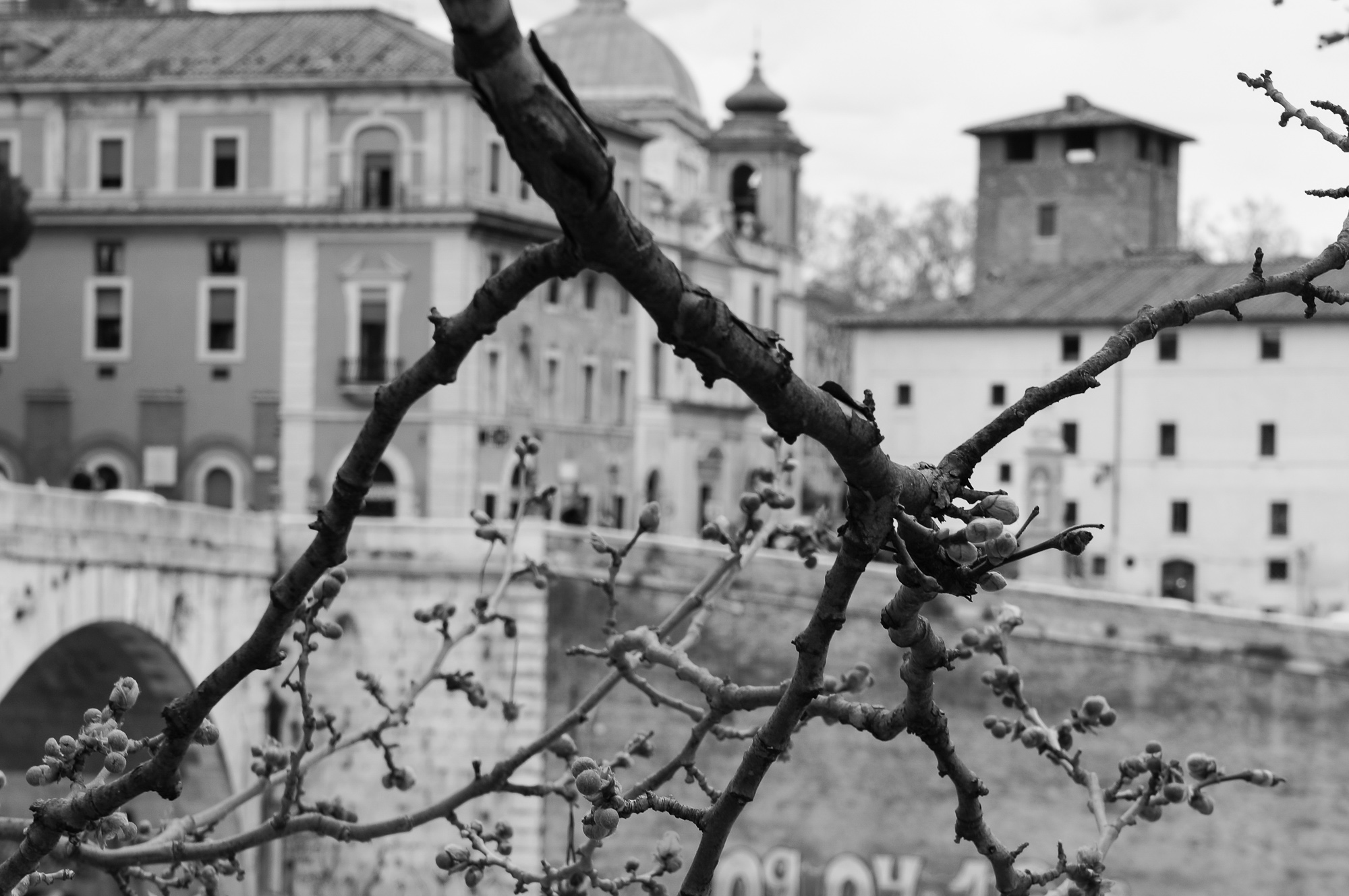Early spring in Rome, 2018