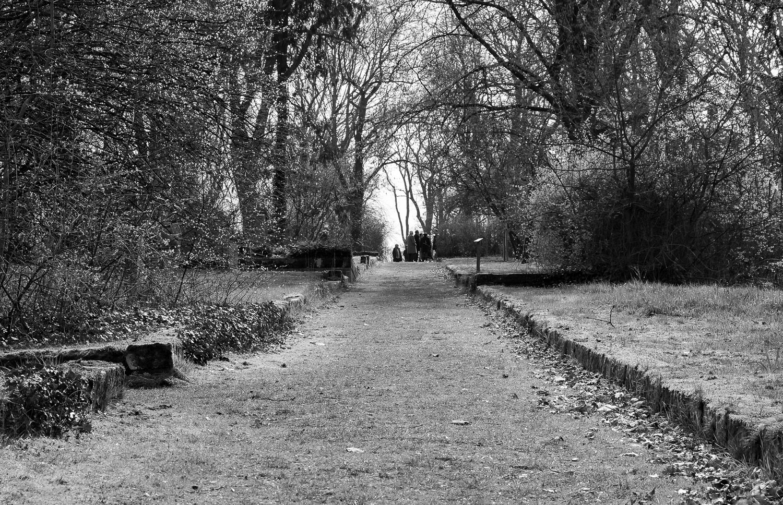 Graveyard, Hannover, 2019