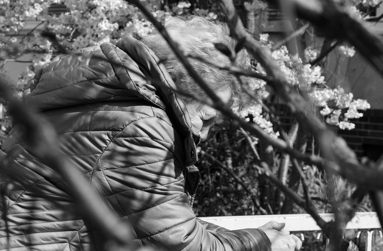 Martina Büttner: Spring impression, Hannover 2019